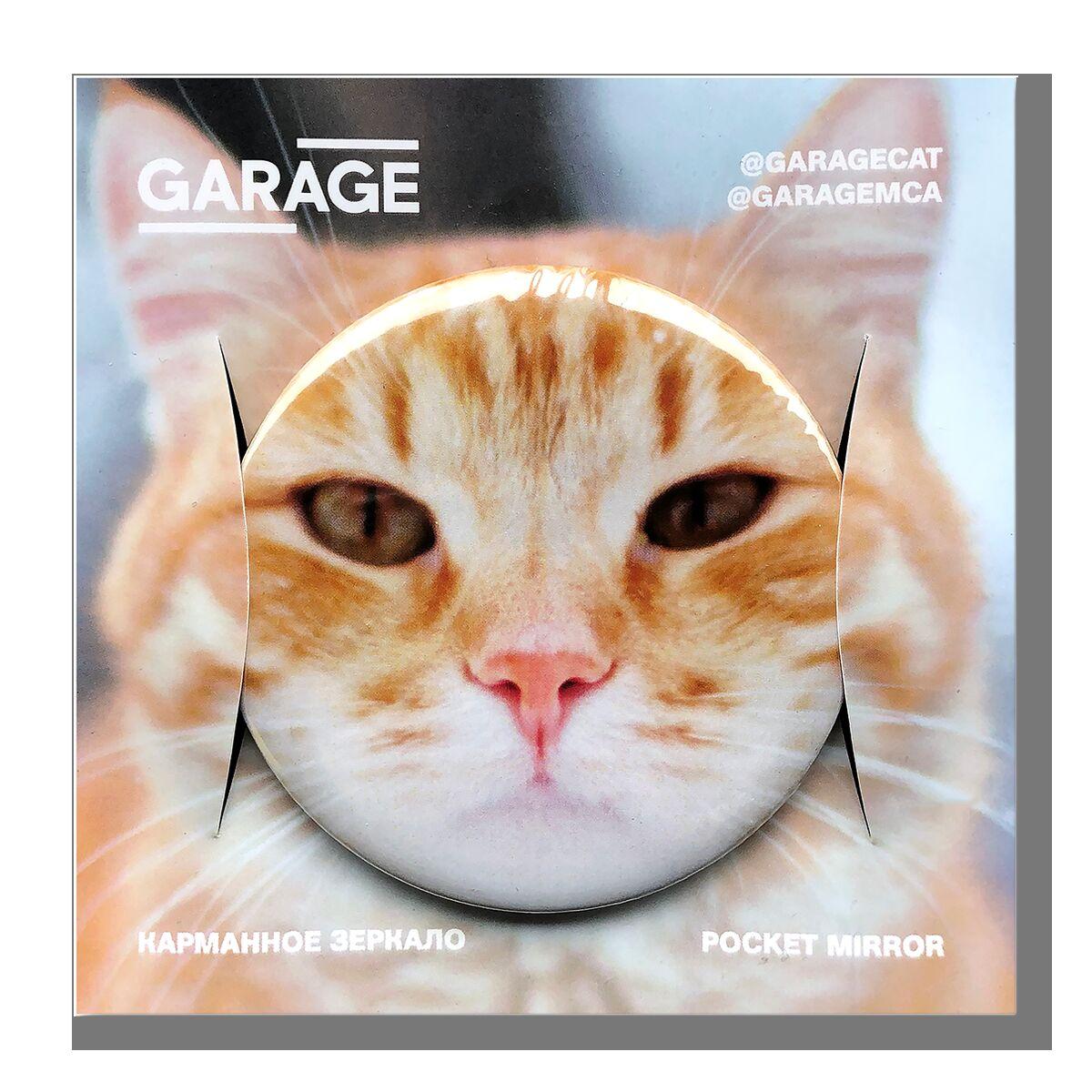 Mirror Garage cat