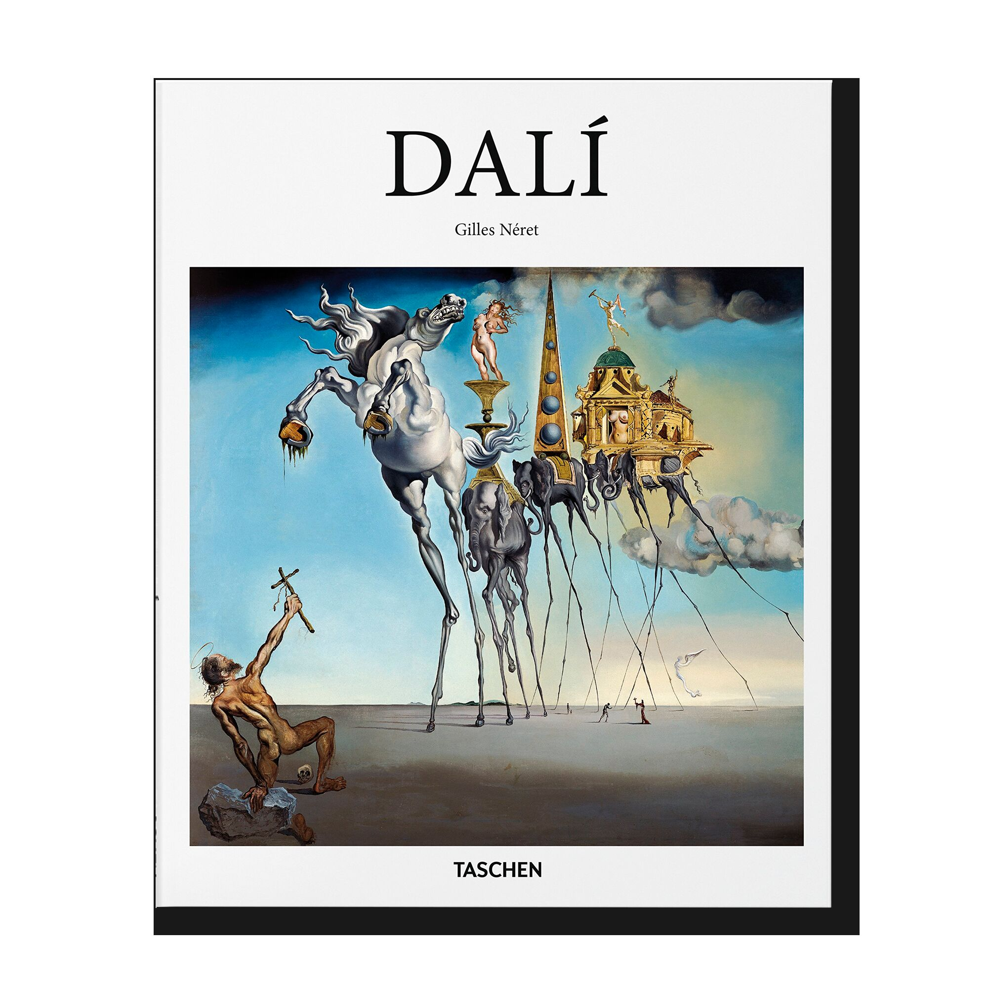 Dali (Basic Art Series)