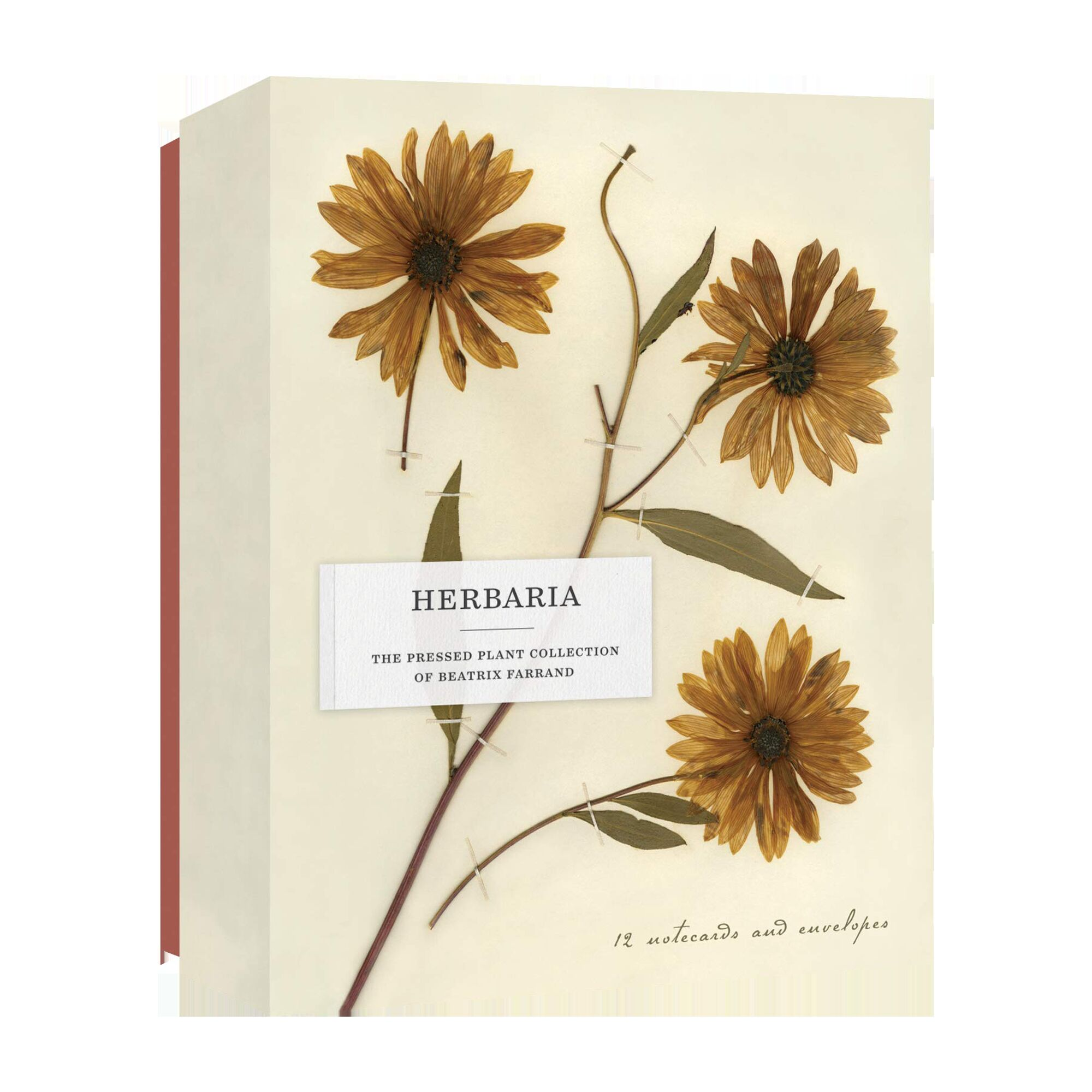 Herbaria: The Pressed Plant Collection of Beatrix Farrand Notecards