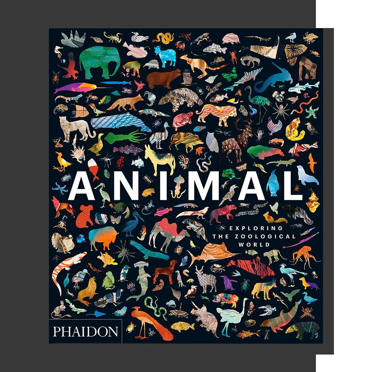 Animal: Exploring the Zoological World